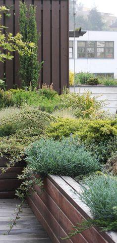 vyvýšené záhony na střešní zahradě / raised beds on the roof garden Plant Box, Private Garden, Garden Landscaping, Landscape Design, Facade, Shed, Roof Gardens, Green, Plants