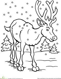 Winter Coloring Sheets for Preschool   Winter Christmas Kindergarten Animals Worksheets: Color the Reindeer