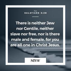 NIV Verse of the Day: Galatians 3:26-28