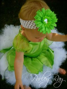 Parley Ray Disney Tinker Bell Fairy Halloween Costume with Tutu