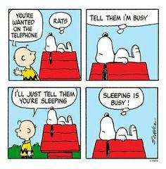 Sleeping is busy!Suficiente ocupación.