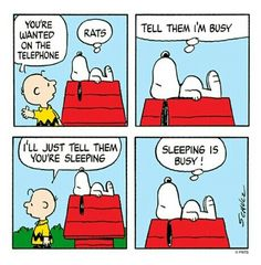 Sleeping is busy!!!