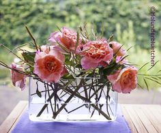 Holunderbluetchen® - Holly Flower®: Friday-Flowerday #26
