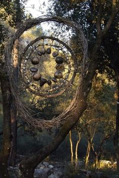 Spencer Byles - Forest Sculptor