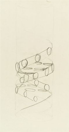 DNA pencil sketch c1953 by Francis Crick