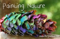 Painting nature cones-take a picture of their creations so they can take them…