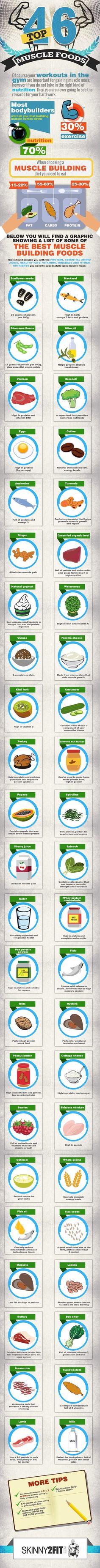 Tips to Gain Muscle Mass with Top 46 Foods - Tipsographic