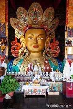 maitreya statue thiksey