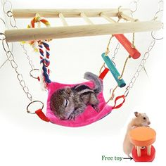 Hamster Gerbil Hammock Climber Parrot Ladder Bird Suspension Bridge Toys Chicks Enlightenment Wooden Toy for Rattles Biting  Grinding MouthLength 906 inch Width 374 inch Height 126 inch ** You can find out more details at the link of the image.Note:It is affiliate link to Amazon.