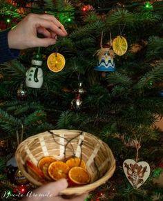 Tort cu ciocolată, cremă de brânză şi vişine | Bucate Aromate Creme Caramel, Christmas Bulbs, Appetizers, Holiday Decor, Simple, Sequins, Sweatshirt, Food, Long Sleeve