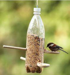 DIY birdfeeder - Possibly glass bottle?
