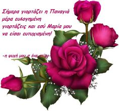 Happy Name Day, Greek Icons, Happy Birthday Wishes Quotes, Greek Beauty, Cute Love Gif, Love Quotes With Images, Blush Roses, Good Morning Quotes, Inspirational Quotes