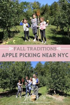 Visit to learn about the best NYC apple picking on Stroller in the City! If you are looking for apple picking near nyc, then this is the blog post for you. Get inspired to go apple picking in nyc this year. Apple picking season is upon us and my family is so excited! This is something we do every fall as a family tradition. It always allows for an amazing country day out of the city for some family fun. Its a great way to teach our youngsters the science around seasons. #apple #picking #nyc New York City Central Park, New York City Guide, New York City Travel, Apple Picking Farm, Apple Picking Season, Apple Farm, Apple Season, Road Trip With Kids, Travel With Kids