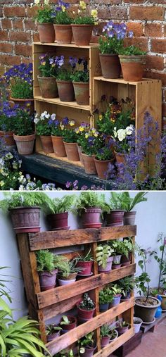 Stack Old Wine Crates or Use Pallet and Fill Them with Clay Pots