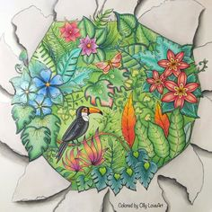 Please vote if you like my work :)  Take a peek at this great artwork on Johanna Basford's Colouring Gallery!