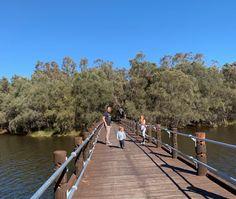 Kuljak Island, Ascot - Buggybuddys guide to Perth Kids Picnic, Picnic Spot, Gravel Path, Pink Lake, Actor Studio, Stadium Tour, Pedestrian Bridge, The Other Side, Ascot
