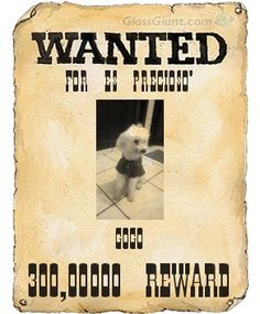 make wanted posters