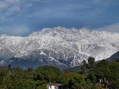 Dhauladhar View From Palampur