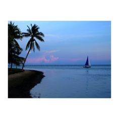 Beautiful Beach and Palms Wallpapers for Your Desktop ❤ liked on Polyvore featuring backgrounds, beach and fills