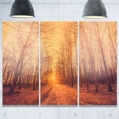 Phase1 Designart - Forest Road into Sunrise - Landscape Photography Glossy Metal Wall Art