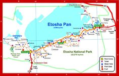Map of Etosha National Park Road Map Version 2010 Self Driving, Travel Photographer, Wildlife Photography, National Parks, Printables, Map, Google Search, Print Templates, Location Map