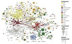 フレイバーネットワーク図  食材の風味と普及度をグラフにしようっていう発想はすごいですね。