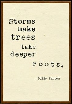 Through trials and tribulations, we mature.…Our roots grow deeper. Plant them firmly in the ground and have faith in the Lord, who will always bring you through the storms.
