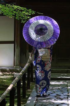 Purple Umbrella through the eyes of jabumbum