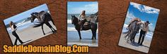 My Favorite Blog ---Domain all about saddles, American Made for Americans--quality saddles delivered to your door. On famous cowboys, natural horsemanship, ranching and riding, saddles, Industry News, stampete information and events, the horse and more. Take a Look, The Saddleman is waiting for you.  Happy Trails!