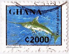 Ghana.  FAUNA.  XIPHIAS GLADIUS.  Scott 1838 A319, Issued 1995 June 19, Litho., Perf. 14 1/4 x 13 3/4, 2000c. /ldb.