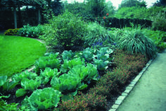 Landscaping with Vegetables by University of Illinois Extension