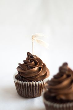 chocolate cupcakes with expresso coffee