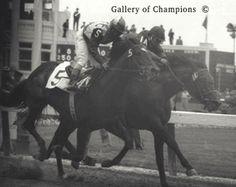 1957 Kentucky Derby Winning Race Horse Iron Leige