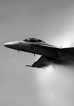 Super Hornet- the only version of the F/A-18 that I like. It's still a good plane though.
