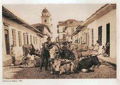 La ciudad de medellin en 1905 CARRERA palace y al fondo la iglesia de la candelaria(frente al parque Berrio)