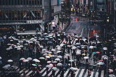 Shibuya by _tuck4