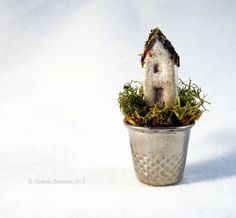 It's a small world after all! Amazing miniscule art works depict tiny detailed worlds in everyday objects Clay Fairy House, Fairy Houses, Clay Fairies, Paludarium, Tiny World, Miniature Houses, Miniature Crafts, Mini Things, Everyday Objects