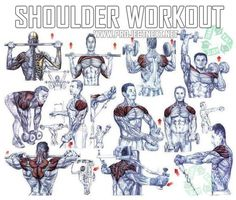 Shoulder Workout - Healthy Fitness Exercises Gym Bicep Press