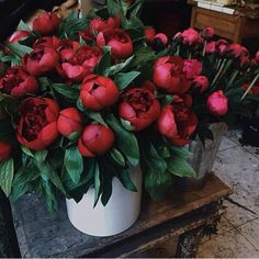 Drive my son crazy searching for red peonies in NYC in May! #LGLimitlessDesign & #Contest