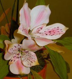 Alstromeria from Tropical Flower Class at Cake Craft Shoppe