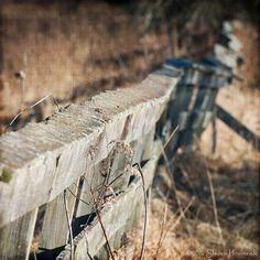 Shoemaker Farm Fence by GAPHIKER, via Flickr