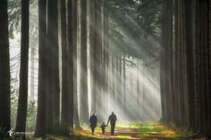 "Walking in Sunshine - Press H to dim the lights <a href=""https://www.facebook.com/LarsvandeGoor"">FOLLOW ME ON FACEBOOK</a> <a href=""http://larsvandegoor.com/seebook/"">FREE SeeBOOK</a> <a href=""http://larsvandegoor.com/"">WEBSITE</a> <a href=""https://instagram.com/larsvandegoor/"">Follow me on Instagram</a>"