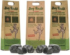 Dog Rocks Prevent Grass Burn Marks, 6 Month Supply, 200 Gram by Dog Rocks: No more urine burn patches on your lawn! All natural minerals, no chemicals - straight from the earth Best Dog Food, Dry Dog Food, Bully Sticks For Dogs, How To Kill Grass, Urine Stains, Dog Urine, Dog Pee, Water Treatment, Lawn Care