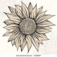 sunflower drawing - Buscar con Google