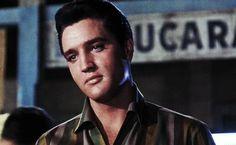 http://ladymoio.blogspot.com.br/2016/04/gifs-Elvis-Presley.html