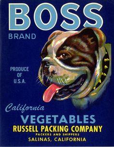 Salinas Bulldog Bull Dog Vegetable Crate Label Art Print
