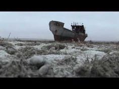 How cotton production has eradicated the Aral Sea and poisoned its workers.     Are our clothes toxic? Marci Zaroff, Eco-fashion pioneer, weighs in:  http://listengirlfriends.wordpress.com/2012/12/05/are-our-clothes-toxic-marci-zaroff-eco-fashion-trailblazer-weighs-in/