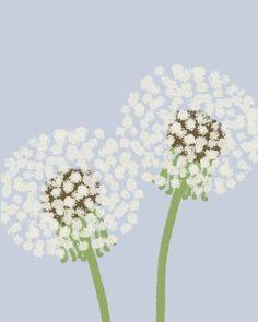 Items similar to fine art print dandelion puffs september 1 2011 on etsy