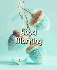 Good Morning Images For Whatsapp Good Morning Beautiful Pictures, Good Morning Images Flowers, Good Morning Images Hd, Morning Love Quotes, Morning Thoughts, Morning Pictures, Beautiful Morning, Good Morning Msg, Good Morning Coffee