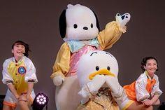 2月29日だけど ポチャッコお誕生日おめでとう  お誕生日はこの写真にするって決めてたのだ  仲良しのペックルも参加して最高です 今年もステキな一年になりますように #ポチャッコ と #ペックル #畠山波夏 さんと #小出里英子 さん   #ピューロアンバサダー #サンリオ #ピューロランド #ポチャッコバースデーライブ Sanrio, Snoopy, Fictional Characters, Fantasy Characters